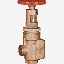 "2.5"" Adjustable Control and Pressure Regulating Valve"